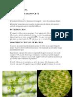 119696038-Fenomenos-de-Transporte.docx