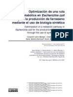 OptimizacionDeUnaRutaMetabolicaEnEscherichiaColiPa-7442301
