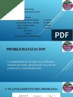 Diapositivas PRACTICA PROFESIONAL.
