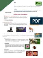 01-06 guia-Biologia-Relaciones Biológicas.pdf