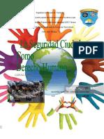 La seguridad ciudadana como derecho Humano