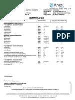 2019-10-25_135000982DB_29809341 2.pdf