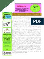 BOLETIN N°  6 (1).pdf