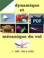 1 - AMV - BIA - CAEA.pdf