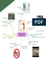 Problemtica_del_Sector_Agropecuario_Local