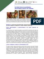 Proyecto Cosecha de Agua - GUIA Agrobiodiversidad y Bancos de Semillas