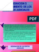 1. DESIGNACION O NOMBRAMIENTO DE PERITOS