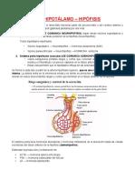 2. Eje hipotalamo - hipofisis.docx