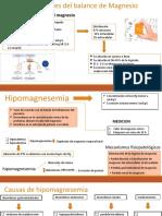 DESORDENES DEL BALANCE DE MAGNESIO,CALCIO Y FOSFORO (1)
