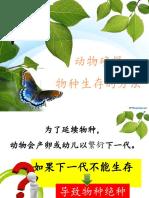 299597850-动物确保物种生存的方法-pptx.pptx