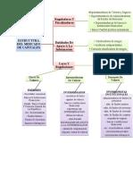 esquema estructura mercado