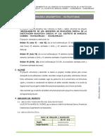 3.2 MEMORIA DESCRIPTIVA ESTRUCTURAS.docx