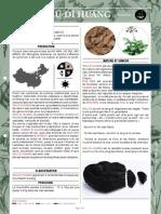 Shu Di Huang Newsletter-02