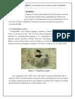 Chapitre-I-Partie-2-Caractéristiques-de-la-substance-étudiée-CYTARABINE.pdf