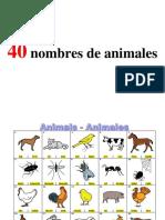 40_nombres_de_animales