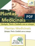 Plantas Medicinais na Gestacao.pdf