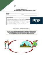 Guía Nº1. Desarrollo Sustentable 6º básico