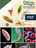 protozorioseprotozooses-130521160639-phpapp01-convertido