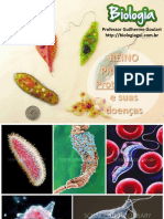 protozorioseprotozooses-130521160639-phpapp01.pdf