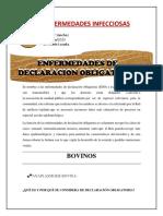 enfermedades de declaracion obligatoria- jennifer sanchez.docx.pdf