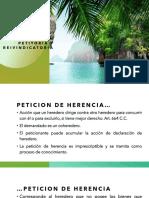 Accion-petitoria-y-reivindicatoria.pdf