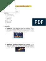 Práctica 6 de la laboratorio Fisica General