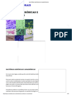 Bactérias Aeróbicas e Anaeróbicas