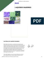 Bactérias Do Aquário Marinho