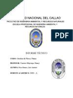 INFORME TÉCNICO de pisco.docx