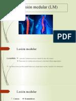 Lesión medular (LM)