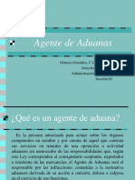 Agente de Aduanas
