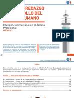 tema3_ie.pdf