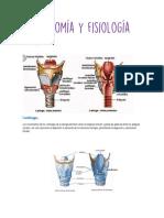 Anatomía y fisiología k.pdf