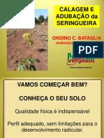 02-CalagemAdubacaoSeringal-OndinoCleanteBataglia.pdf