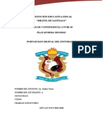 portafolio word supletorio