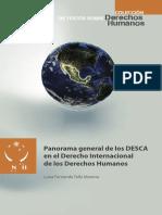 Tello_Panorama general de los DESCA.pdf