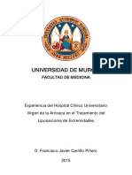Francisco Javier Carrillo Piñero Completa (1).pdf