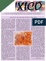 JORNAL FUXICO n. 46