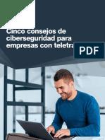 {b6a0b058-7516-4e3a-8ab0-737ae036f8a6}_WP_ES_cinco_consejos_FINAL_(2)