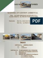 tesis mercado modelo.ppt