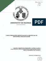 AAIU607689.pdf