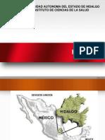 estado de Hidalgo Regiones (1)