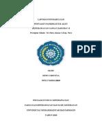 LP Pankreatitis Akut Baru