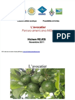 pdf-3avocatier1112_compress