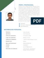 Hoja de Vida - Ing. Jesús Ortiz.pdf