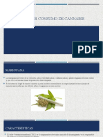 Trastorno por consumo de cannabis