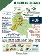 infografia-palmadeaceite-colombia-2019