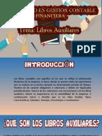 EXPOSICIÓN LIBRO AUXILIAR _contable