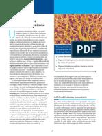 01-Celulas y organos del sistema inmune.pdf