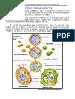 TEXTO-96.pdf